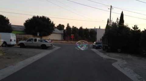 2012 07 07 travelin' guar bubble