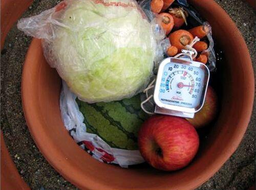 Pot in pot cooler 4