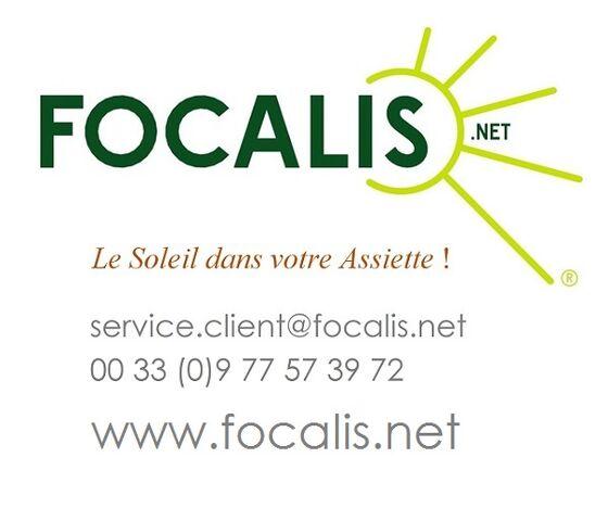 File:FOCALIS l'expert de la cuisson solaire.jpg