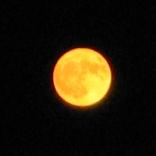 File:Moon-large,yellow.jpg