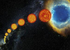 The life of Sun-like stars