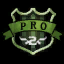 File:Pro.png