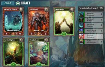 Draft Picks