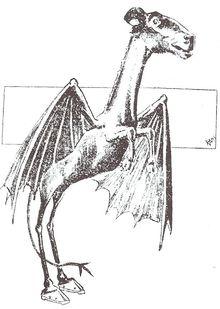 File:Jersey Devil.jpg