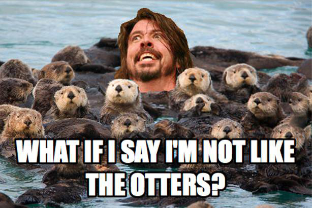 File:Otters.jpg
