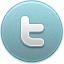 File:20131120004129!Twitter icon active.png