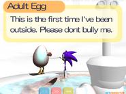 V egg