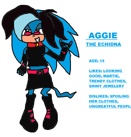 File:Aggie the echidna.png