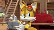 Tails alone again
