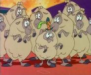 Gambler sheep