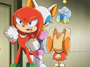 Knuckles029