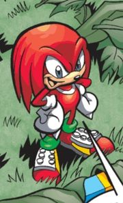 File:Knuckles ATAP.jpg