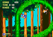 Tubular loop sonic and knuckles