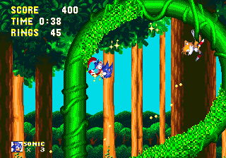 File:Tubular loop sonic and knuckles.png