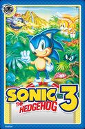 Sonic 3 Card