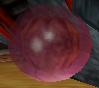 File:Biolizard egg.png