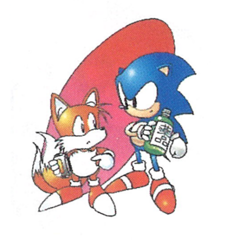File:Sonic-2-Warning-IV.png