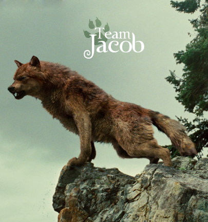 File:Team-Jacob-fire-and-ice-the-wolf-pack-20286792-405-432.png