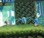 Dragonfly Sonic Generations 3DS