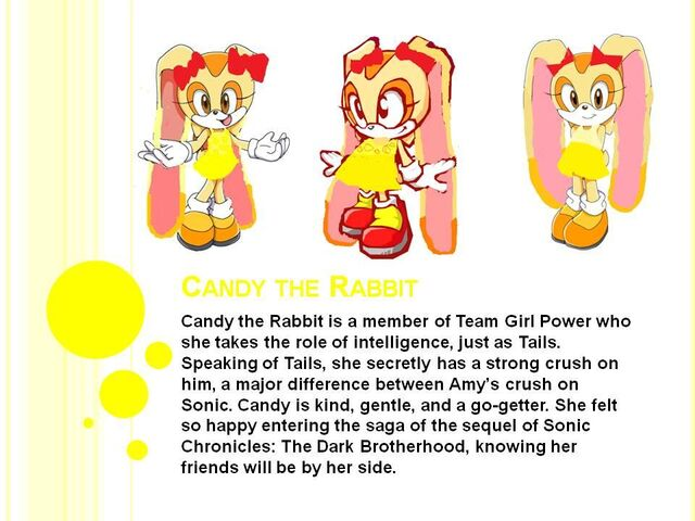 File:Candy the Rabbit's Profile.jpg