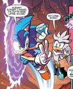 Sonic entering portal