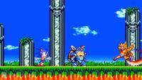 Sonic&possom