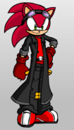 Jevon the Hedgehog