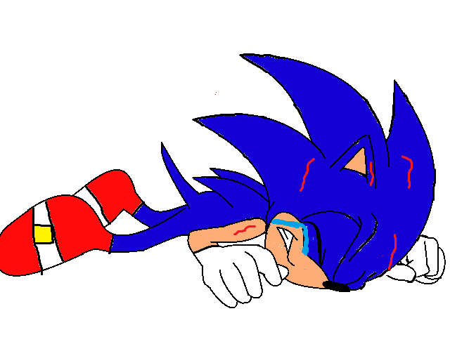 File:Sonic gets hurt.png