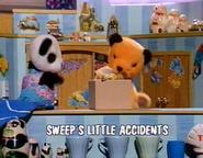 Sweep'sLittleAccidentstitlecard