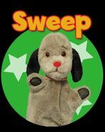 SweepWebsitePromo