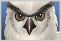 File:Olcadan SClll icon.png