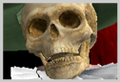 Thumbnail for version as of 20:54, November 16, 2011