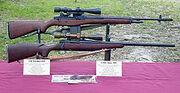 220px-Sniper Rifles M40 XM21