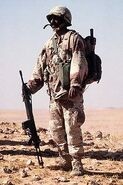 220px-Saudi Soldier with G3