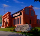 Schlesinger Gym
