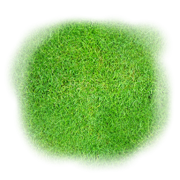 File:Spr tile grass 256x256 9.png