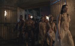 250?cb=20130318231422 massacre at the house of batiatus spartacus wiki fandom,Spartacus House Of Batiatus Floor Plan