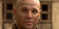 Fugitivus (term)