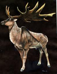 File:Irish elk -1.jpg