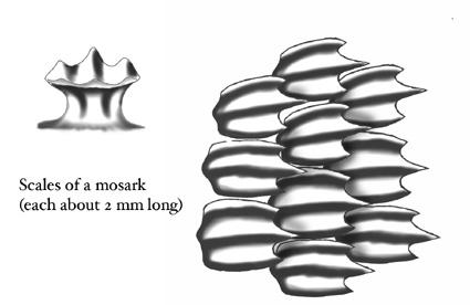 Moscale