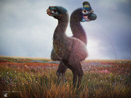 Neoviraptor