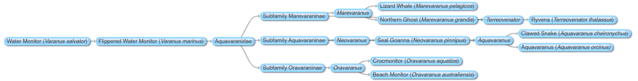 File:New Mosasaurs Relationships.png