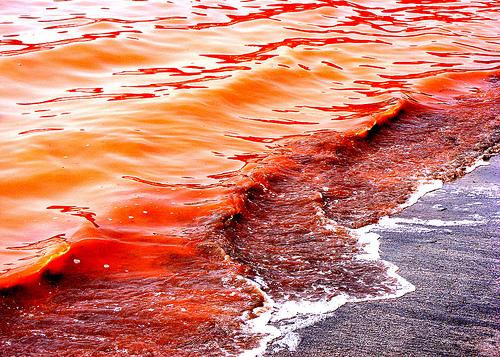 File:Iron oceans.jpg