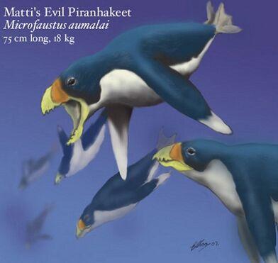 Matti's evil piranhakeet