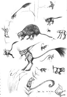 Specrodents