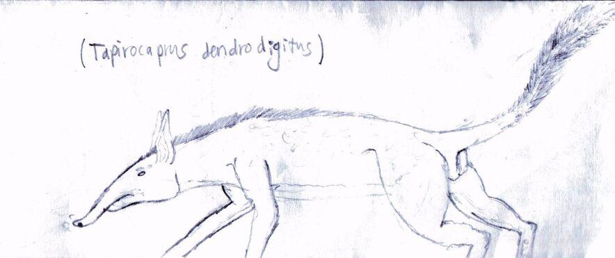 Tapirocaprus dendrodigitus spec by desorages-d7apjuv