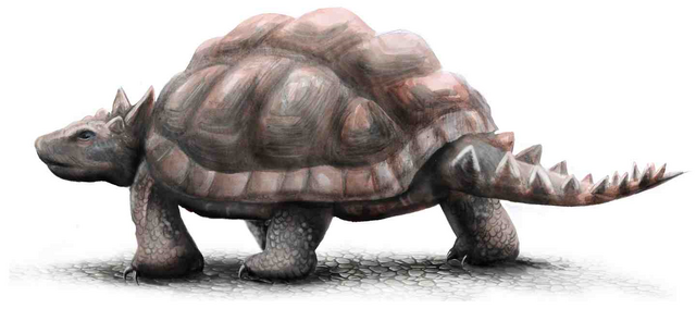 File:Meiolania turtle.png