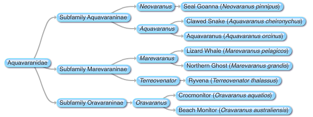 File:New Mosasaurs .png