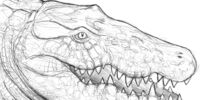 Spec: Crocodylia