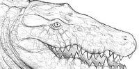 Spec: Crocodylia